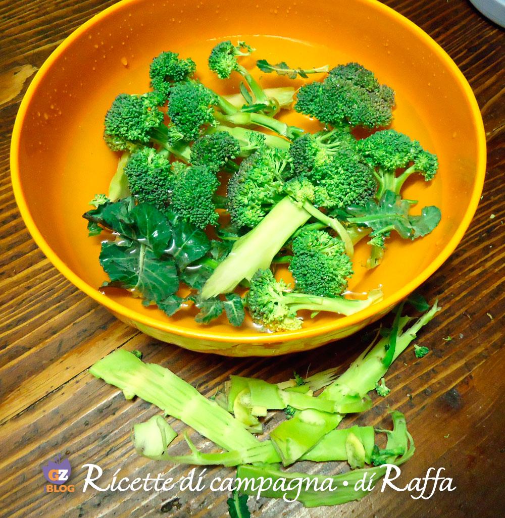 capatura_broccoletti