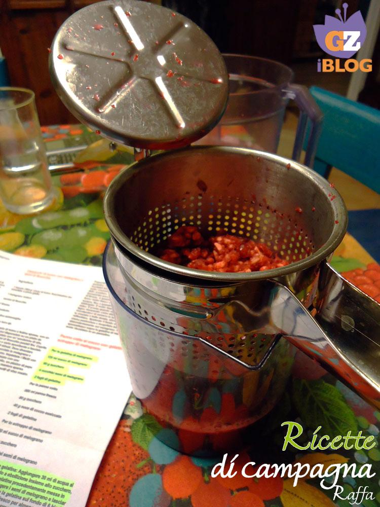 gelatina di melagrana - passapatate