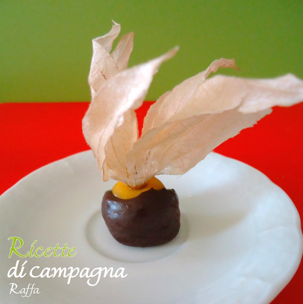 alchechengi_cioccolato