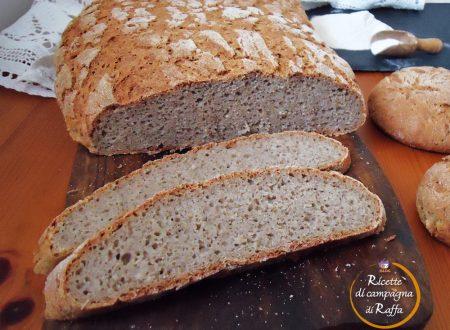 Pane veloce con farina di grano saraceno