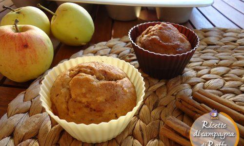 Muffin con kefir alle mele e cannella