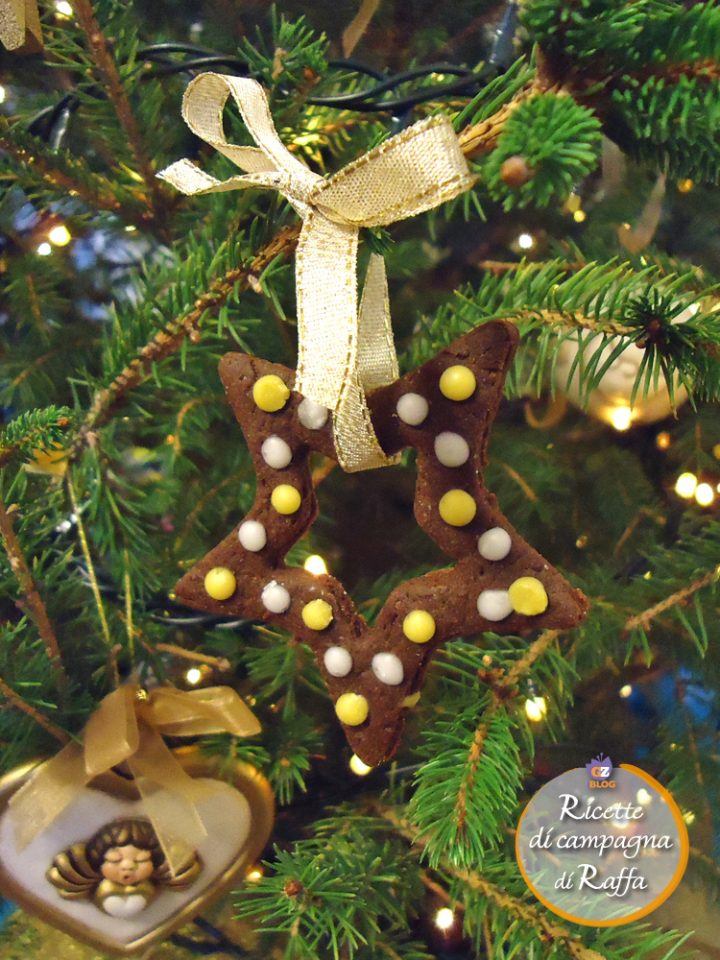 Biscotti natalizi al cacao e anice