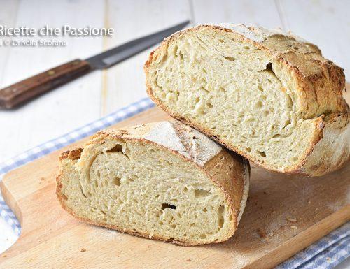Pane fatto in casa con lievito madre e farine miste