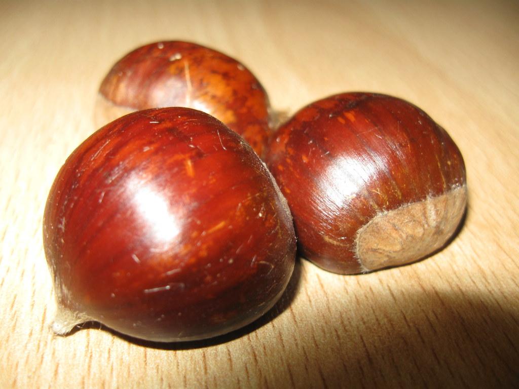 Crema di castagne o confettura di marroni ricetta - Disegni di castagne ...