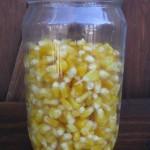 Vasetto di mais al naturale fatto in casa