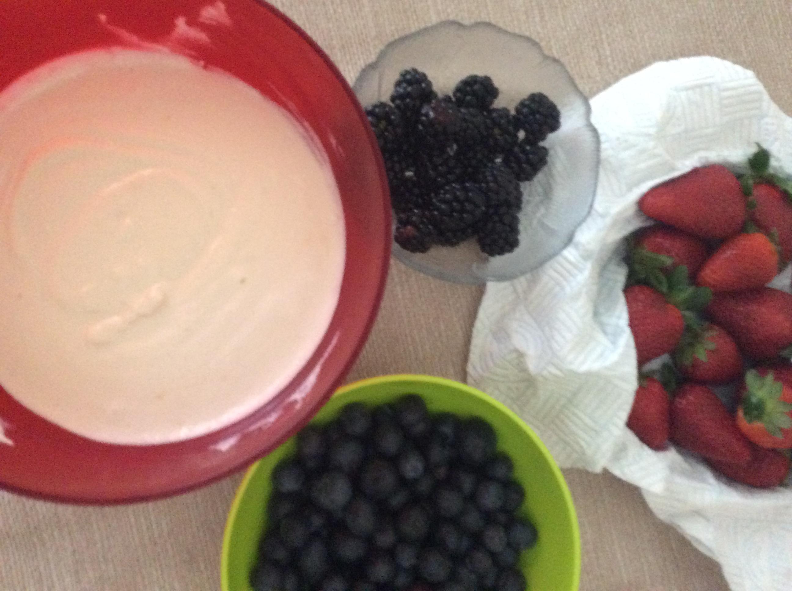 ricotta e yogurt e frutti di bosco