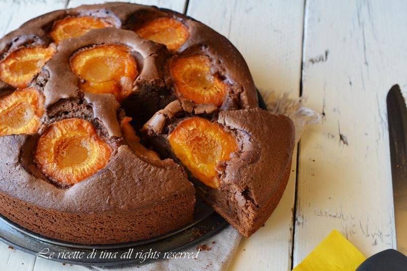 torta di albicocche,torta con albicocche,torta con frutta fresca,le ricette di tina