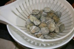 COME PULIRE LE VONGOLE DALLA SABBIA - consiglio di cucina