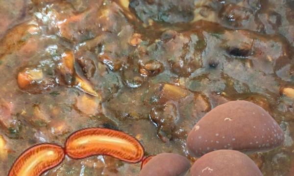 Sugo funghi e salsiccia
