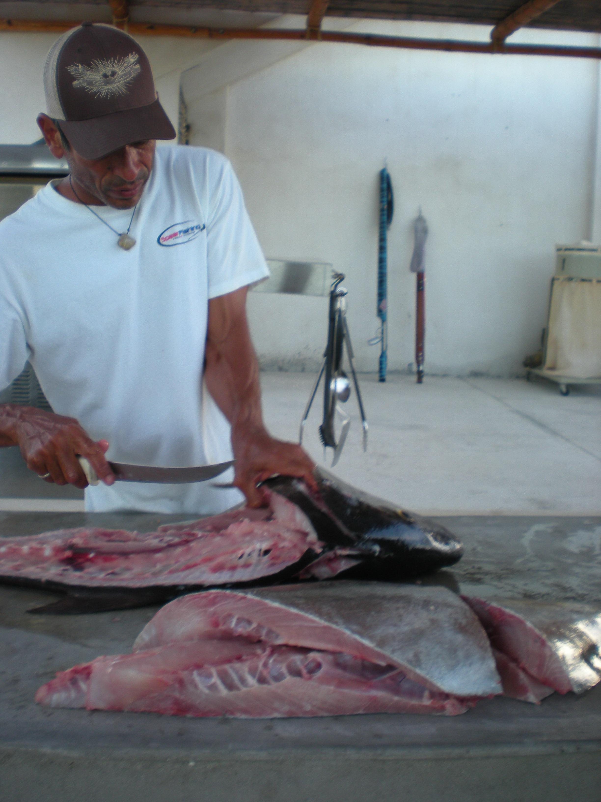 Introduzione Alle Ricette Del Pescatore Cuoco Ricette Maremania