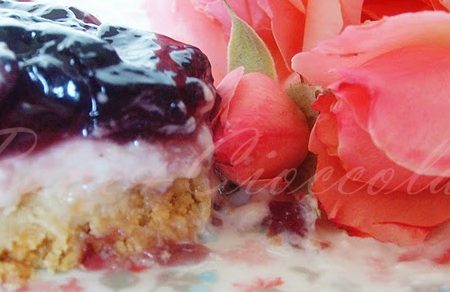 cheesecake alla gelatina di Lambrusco Mantovano