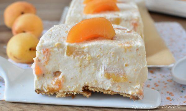 SEMIFREDDO alle Albicocche Ricetta DOLCE dessert freddo fatto in casa