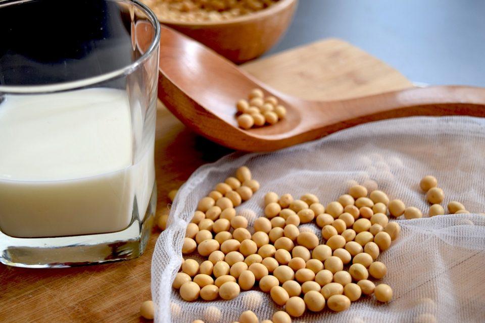 come scegliere il latte vegetale migliore
