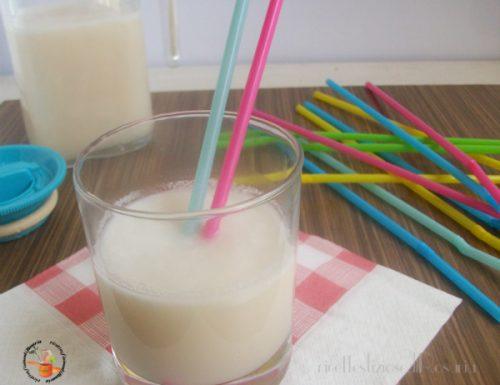 Latte di cocco fatto in casa