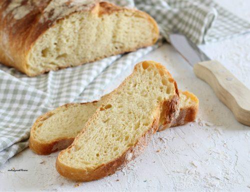 Pane di grano duro senza impasto