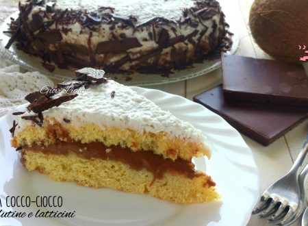 Torta cocco-ciocco senza glutine e latticini