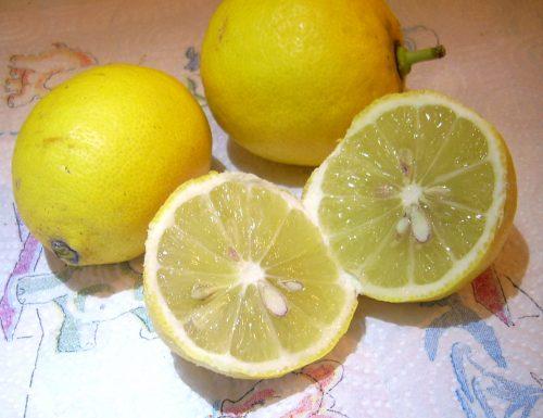 Proprietà, benefici e coltivazione del limone