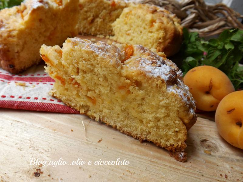 Crostata rustica con le albicocche