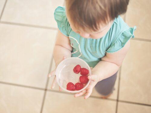 Strumenti essenziali per cucinare ai Neonati