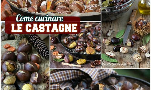Come cucinare le CASTAGNE