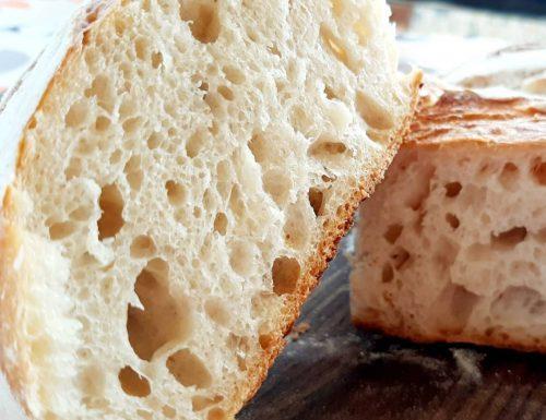 Pane a lunga lievitazione con lievito madre