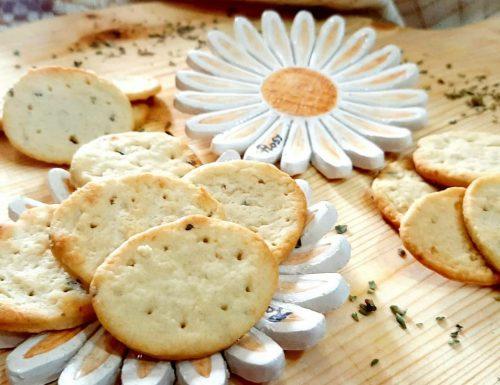 Crackers con esubero di lievito madre parmigiano e origano