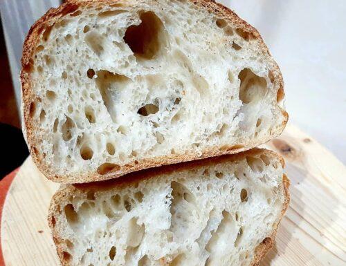 Filoncini di pane con esubero di pasta madre