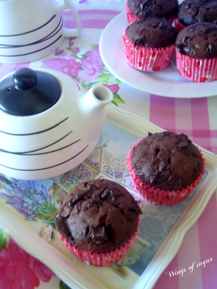 Muffin al cacao con pezzetti di cioccolato fondente - wings of sugar blog ..