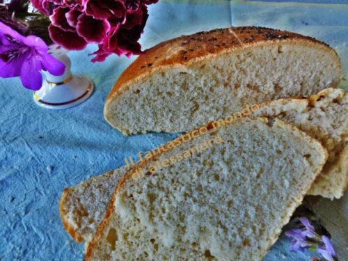 Ricetta per il pane Pugliese |ricette lievitate |il fantastico mondo di Alessandra
