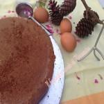 Pan di spagna al cioccolato   Il fantastico mondo di Alessandra