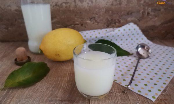 Crema di limoncello alla grappa