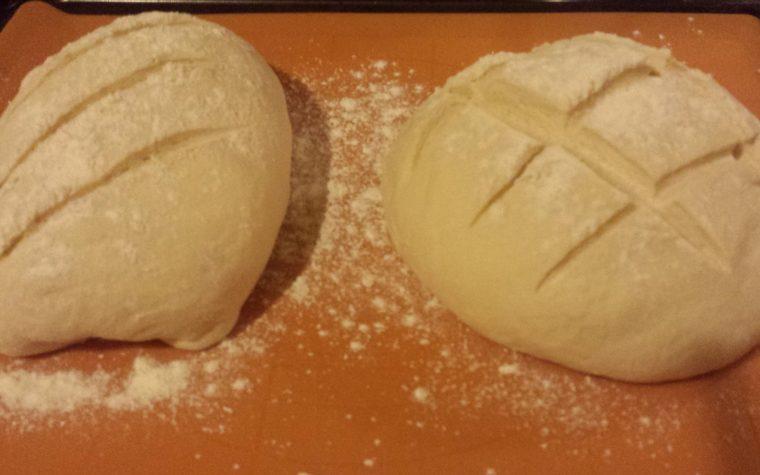 Pane e pizza in un unico impasto con soli 5 g di lievito di birra