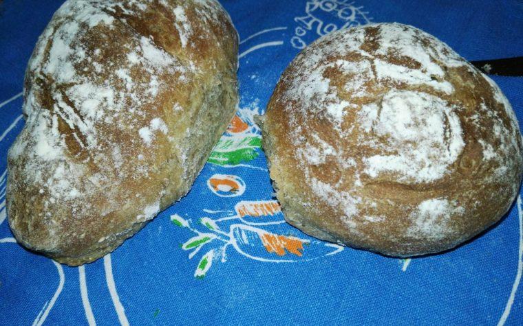 Pane ai 5 cereali con lievito madre in polvere
