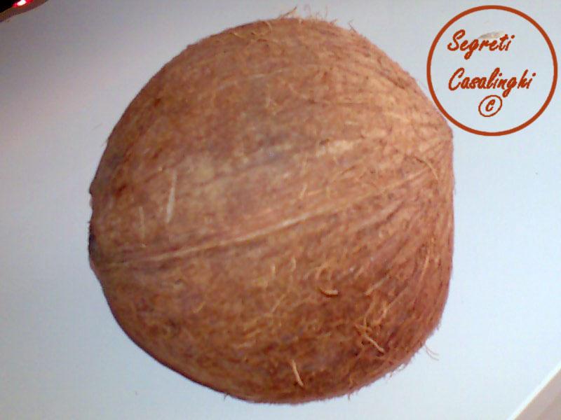 crema pasticcera cocco