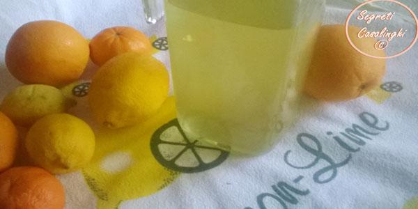 liquore agrumi