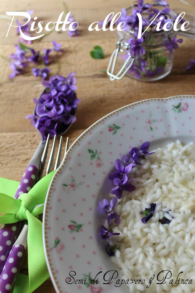 risotto alle viole violette