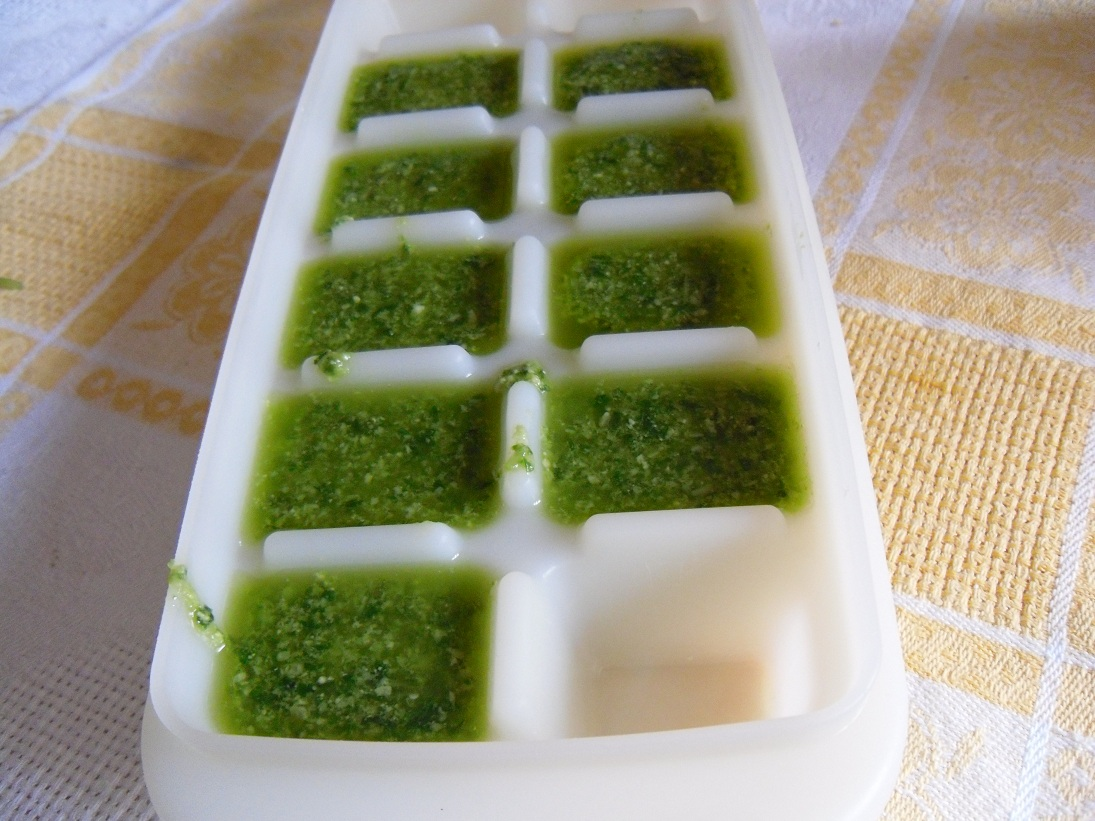 Ricerca ricette con come conservare il pesto - Come coltivare il basilico in casa ...
