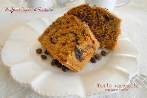 Torta variegata al cacao e caffe'