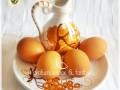 Le uova in cucina, i metodi di base