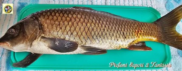 Carpa al forno ricetta di pesce Blog Profumi Sapori & Fantasia