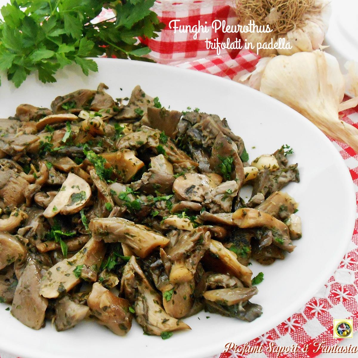 Ricette per cucinare i funghi pleurotus le migliori - Ricette per cucinare ...