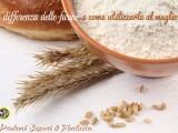 La differenza delle farine e come utilizzarle al meglio