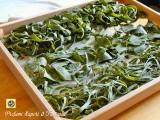 Pasta fresca con ortiche e farina integrale ricetta base
