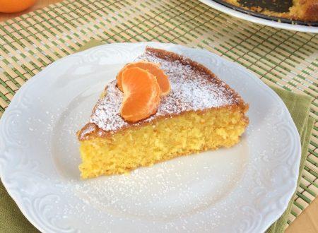 Torta ai mandarini biologici