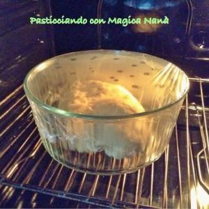 pellicola bucherrelata e lasciatelo lievitare per altre due ore, sempre nel forno spento con la luce accesa.