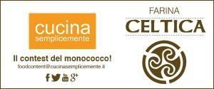 FascettaCeltica600x250px
