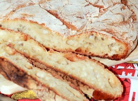 Pane bianco tipo tartaruga a lunga lievitazione