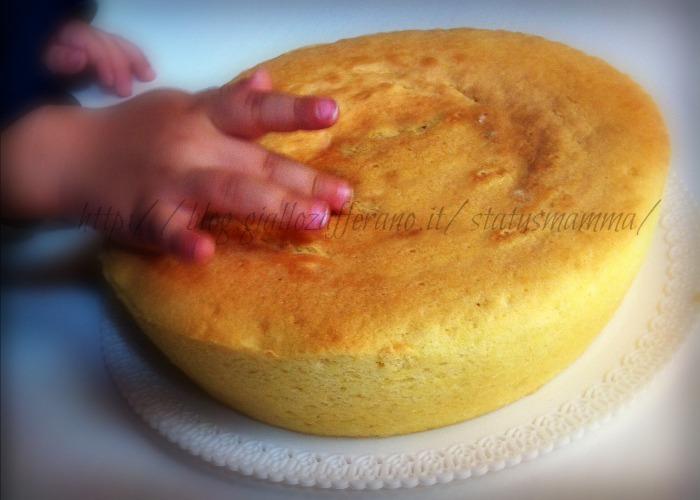 Ricette torte al microonde