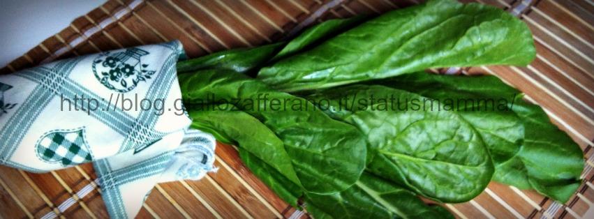 Le Bietole conoscere le bietole verdura ricette raccolta teoria blog cucina statusmamma