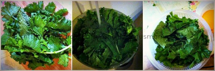 Cime di rapa saltate in padella ricette contorno ricetta statusmamma friarielli cucinare  foto verdura contorno